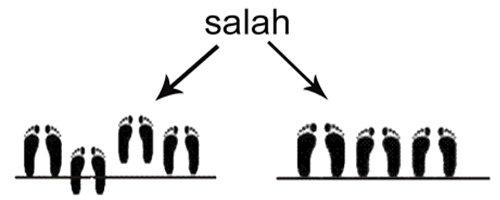 telapak kaki ketika shalat berjamaah
